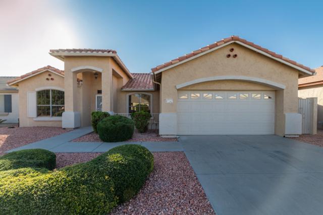 17242 N Goldwater Drive, Surprise, AZ 85374 (MLS #5850495) :: Desert Home Premier