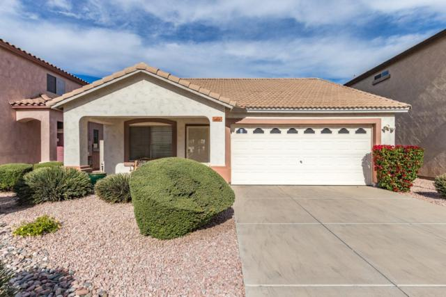 1112 E Hidalgo Avenue, Phoenix, AZ 85040 (MLS #5850522) :: Realty Executives