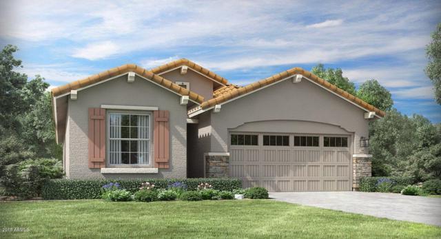9541 E Talon Avenue, Mesa, AZ 85212 (MLS #5850664) :: Gilbert Arizona Realty