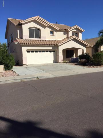 8418 W Mary Ann Drive, Peoria, AZ 85382 (MLS #5850693) :: The Everest Team at My Home Group