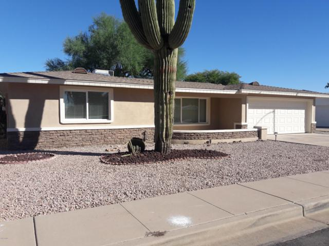559 S Racine, Mesa, AZ 85206 (MLS #5850725) :: Conway Real Estate