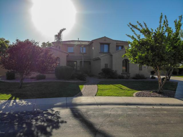 6428 S Magic Court, Gilbert, AZ 85298 (MLS #5850736) :: The Kenny Klaus Team