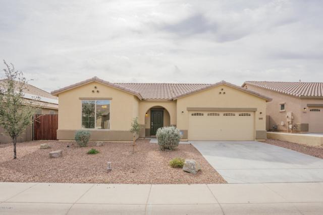 18407 W Carol Avenue, Waddell, AZ 85355 (MLS #5850765) :: Kepple Real Estate Group