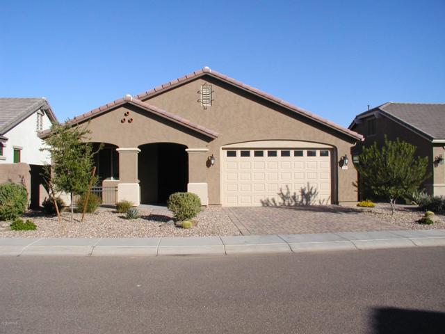 258 E Canyon Way, Chandler, AZ 85249 (MLS #5850789) :: Relevate   Phoenix