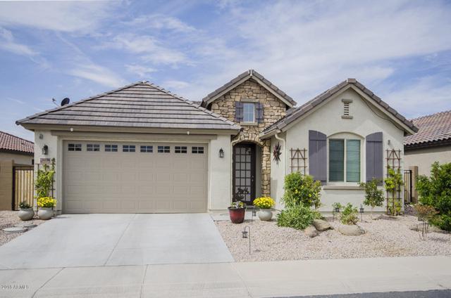 16106 N 109TH Drive, Sun City, AZ 85351 (MLS #5850844) :: The Laughton Team