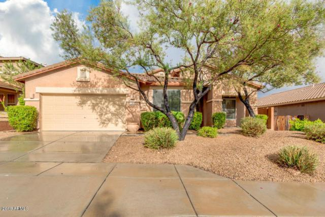 27191 N 86TH Avenue, Peoria, AZ 85383 (MLS #5850867) :: The Results Group
