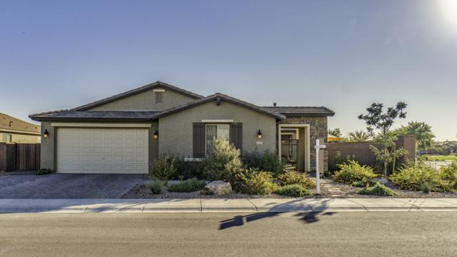 42185 N Myrtle Street, San Tan Valley, AZ 85140 (MLS #5850947) :: The W Group