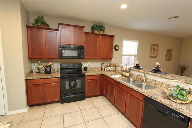 41233 W Lucera Lane, Maricopa, AZ 85138 (MLS #5850968) :: Team Wilson Real Estate