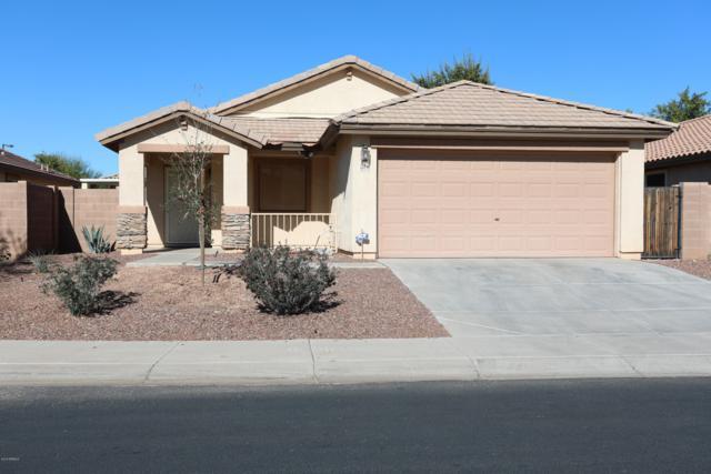 25746 W St Catherine Avenue, Buckeye, AZ 85326 (MLS #5850980) :: Team Wilson Real Estate