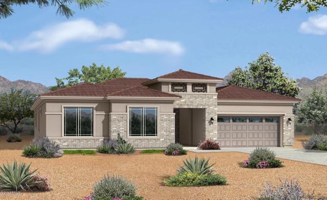19389 S 194TH Way, Queen Creek, AZ 85142 (MLS #5851003) :: Team Wilson Real Estate