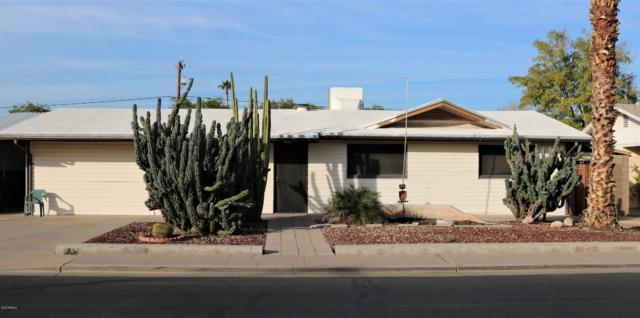 662 E 9TH Avenue, Mesa, AZ 85204 (MLS #5851007) :: Conway Real Estate