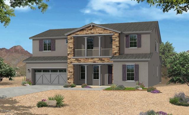 19396 S 194TH Way, Queen Creek, AZ 85142 (MLS #5851045) :: Team Wilson Real Estate