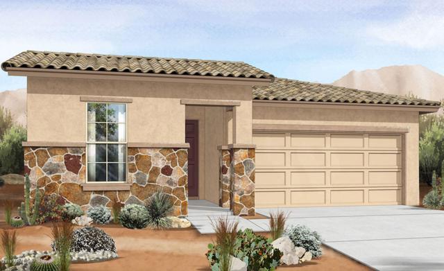 4050 W Coles Road, Laveen, AZ 85339 (MLS #5851075) :: Arizona 1 Real Estate Team