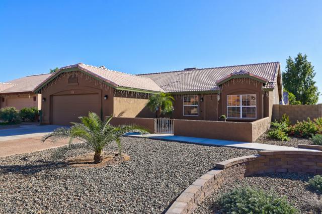 4501 E Grovers Avenue, Phoenix, AZ 85032 (MLS #5851093) :: The Pete Dijkstra Team