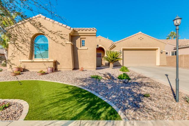 2048 E Powell Place, Chandler, AZ 85249 (MLS #5851136) :: Gilbert Arizona Realty