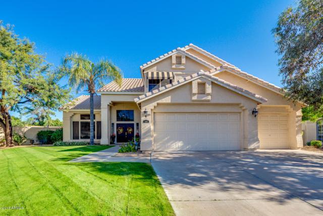 6138 E Juniper Avenue, Scottsdale, AZ 85254 (MLS #5851147) :: Door Number 2