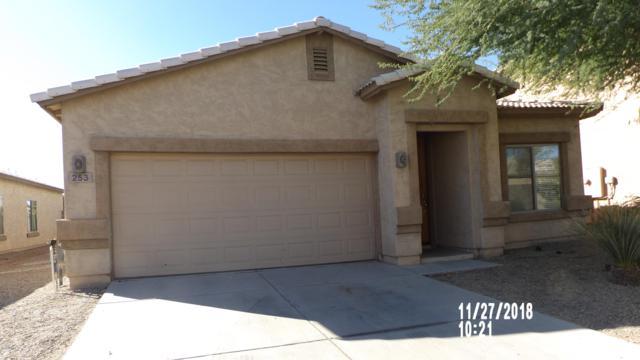 253 E Saddle Way, San Tan Valley, AZ 85143 (MLS #5851180) :: RE/MAX Excalibur