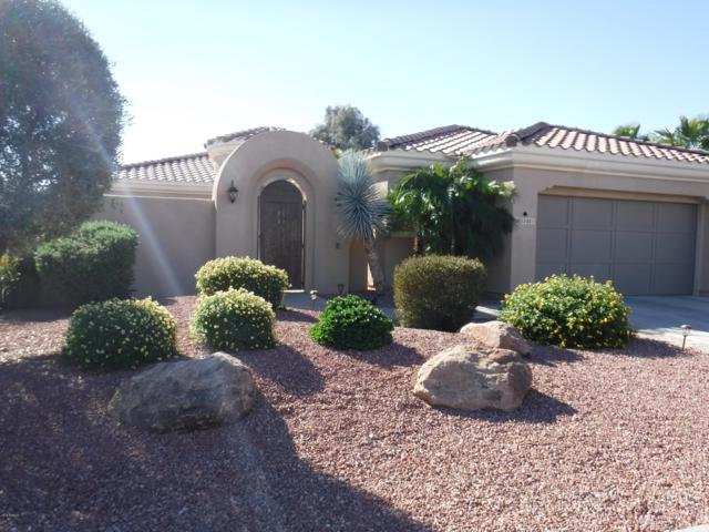 13431 W Junipero Drive, Sun City West, AZ 85375 (MLS #5851234) :: RE/MAX Excalibur