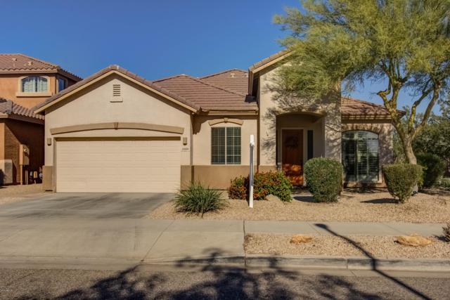 2206 W Calle Del Sol, Phoenix, AZ 85085 (MLS #5851239) :: The Daniel Montez Real Estate Group