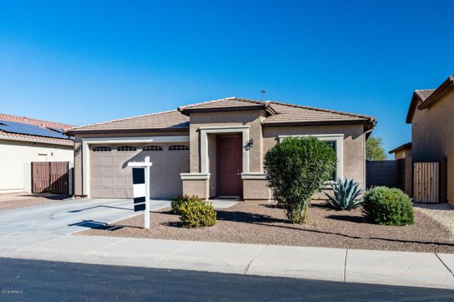25717 N 131ST Drive, Peoria, AZ 85383 (MLS #5851244) :: The Bill and Cindy Flowers Team