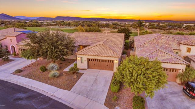 28407 N 123RD Lane, Peoria, AZ 85383 (MLS #5851282) :: The Results Group