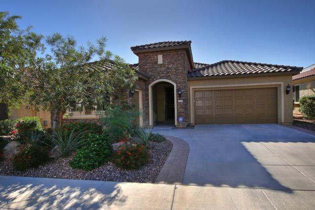 7503 W Noble Prairie Way, Florence, AZ 85132 (MLS #5851347) :: Team Wilson Real Estate