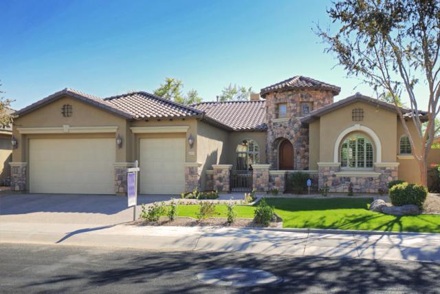 15793 W Bonitos Drive, Goodyear, AZ 85395 (MLS #5851367) :: RE/MAX Excalibur