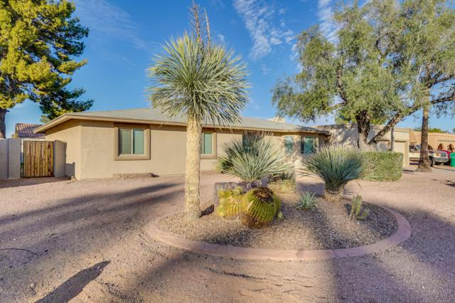 1516 E Mclellan Road, Mesa, AZ 85203 (MLS #5851422) :: Arizona 1 Real Estate Team