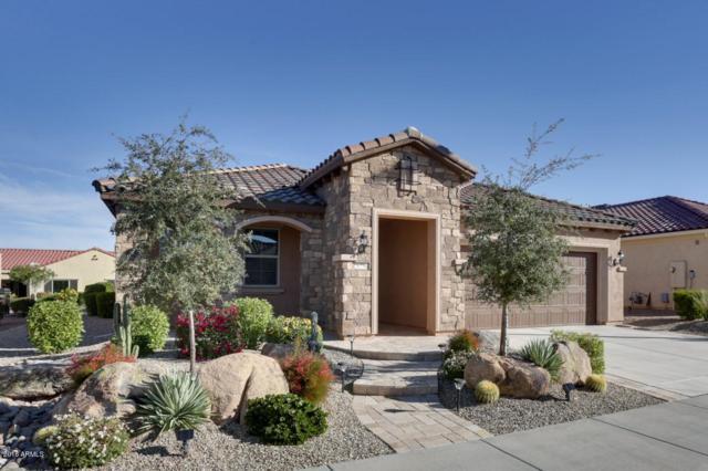 26798 W Escuda Drive, Buckeye, AZ 85396 (MLS #5851432) :: Desert Home Premier