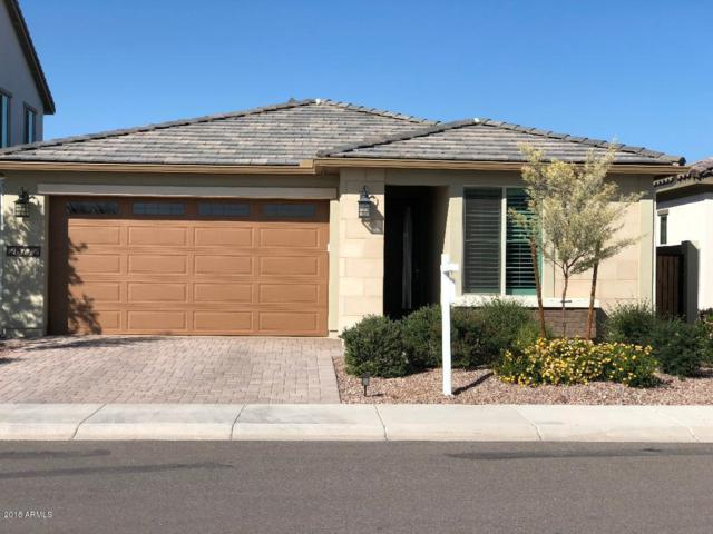 28772 N 121st Lane, Peoria, AZ 85383 (MLS #5851443) :: Kortright Group - West USA Realty
