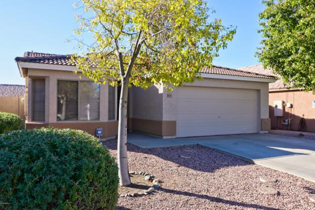 10767 W Cambridge Avenue, Avondale, AZ 85392 (MLS #5851446) :: Team Wilson Real Estate