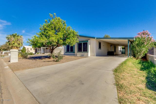 683 S 93RD Way, Mesa, AZ 85208 (MLS #5851486) :: The Daniel Montez Real Estate Group