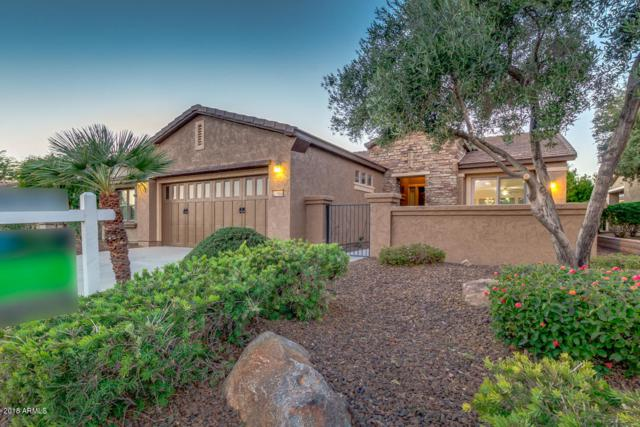 27466 N 130TH Drive, Peoria, AZ 85383 (MLS #5851509) :: The Results Group