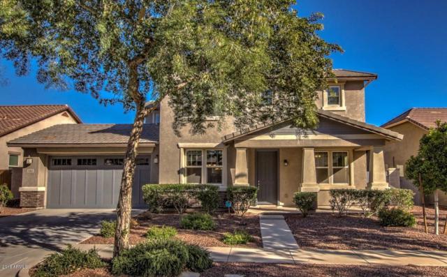 3261 N Springfield Street, Buckeye, AZ 85396 (MLS #5851531) :: The Results Group