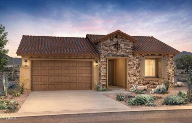 26601 W Matthew Lane, Buckeye, AZ 85396 (MLS #5851554) :: Kortright Group - West USA Realty