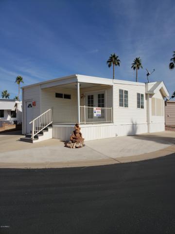 1000 S Idaho Road #217, Apache Junction, AZ 85119 (MLS #5851587) :: The Daniel Montez Real Estate Group