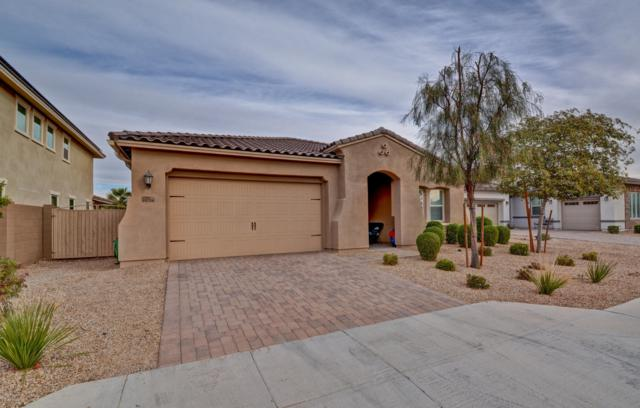 14758 W Pasadena Avenue, Litchfield Park, AZ 85340 (MLS #5851610) :: The Everest Team at My Home Group