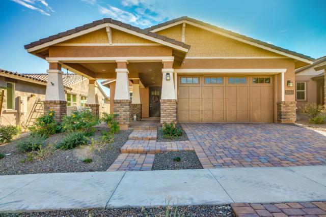 20861 W Minnezona Avenue, Buckeye, AZ 85396 (MLS #5851621) :: Team Wilson Real Estate