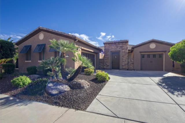 13049 W Running Deer Trail, Peoria, AZ 85383 (MLS #5851638) :: The Results Group