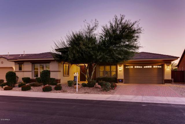 15951 W Bonitos Drive, Goodyear, AZ 85395 (MLS #5851679) :: RE/MAX Excalibur