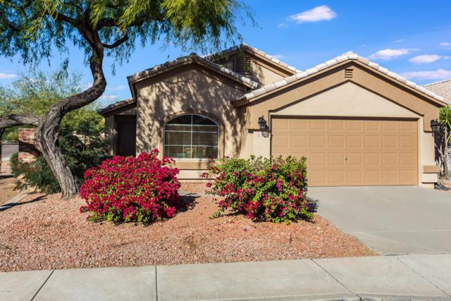 3620 W Charlotte Drive, Glendale, AZ 85310 (MLS #5851784) :: Arizona 1 Real Estate Team