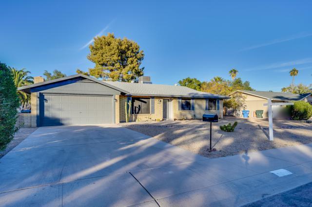 4902 E Paradise Drive, Scottsdale, AZ 85254 (MLS #5851843) :: RE/MAX Excalibur