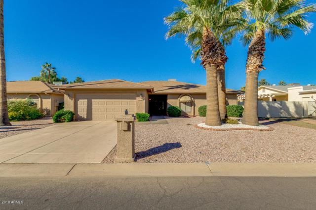 26218 S Lakewood Drive S, Sun Lakes, AZ 85248 (MLS #5851846) :: Yost Realty Group at RE/MAX Casa Grande