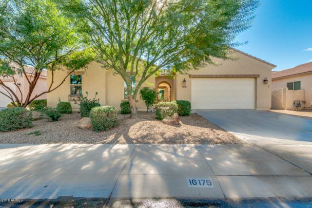 16179 W Coronado Road, Goodyear, AZ 85395 (MLS #5851847) :: Team Wilson Real Estate