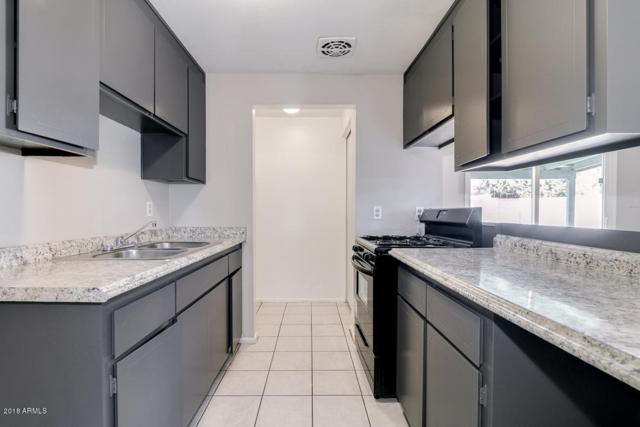 13822 N 38TH Place, Phoenix, AZ 85032 (MLS #5851853) :: Arizona 1 Real Estate Team