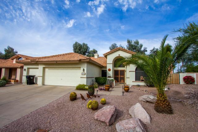 5956 E Julep Street, Mesa, AZ 85205 (MLS #5851859) :: Arizona 1 Real Estate Team