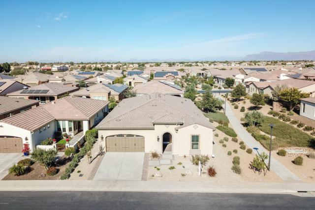 404 E Harmony Way, San Tan Valley, AZ 85140 (MLS #5851893) :: The Daniel Montez Real Estate Group