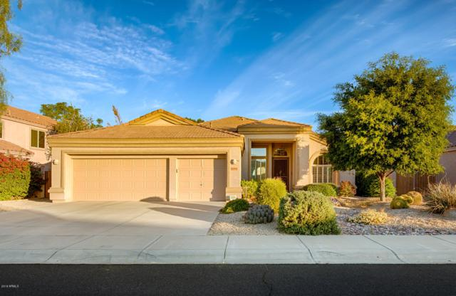 6806 W Skylark Drive, Glendale, AZ 85308 (MLS #5851914) :: Kepple Real Estate Group