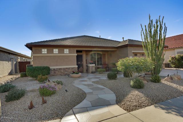 18351 N Krista Way, Surprise, AZ 85374 (MLS #5851917) :: Desert Home Premier