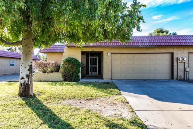 4907 E Magic Stone Drive, Phoenix, AZ 85044 (MLS #5851929) :: Relevate | Phoenix